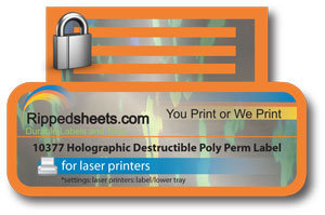Holographic Destructible Label